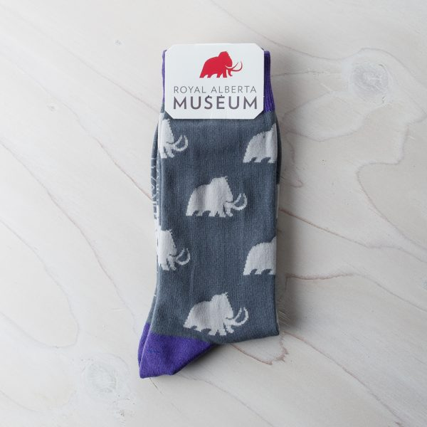RAM socks