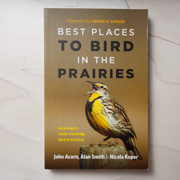 best places to bird