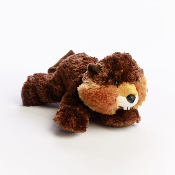 flopsie beaver