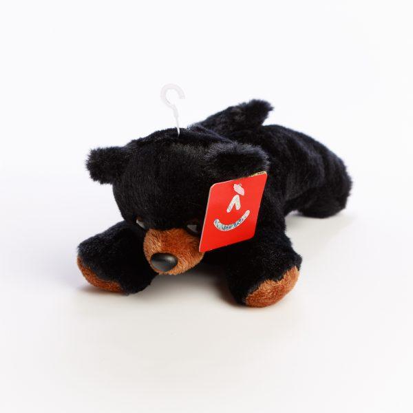 flopsie black bear
