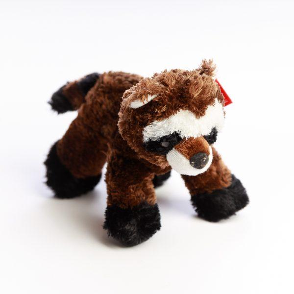 flopsie raccoon