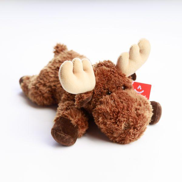 laying down moose
