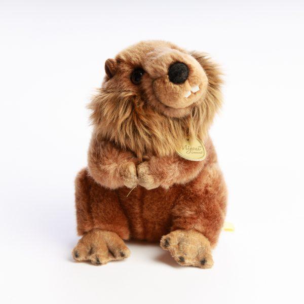 miyoni beaver