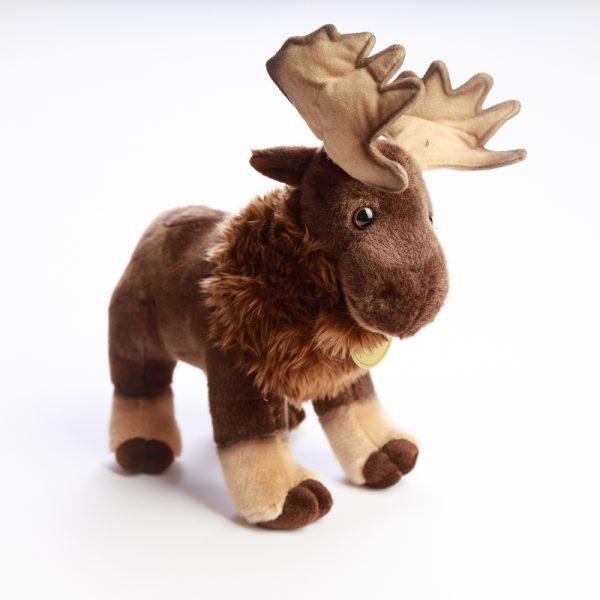 miyoni moose