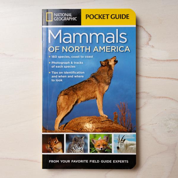 ng mammals