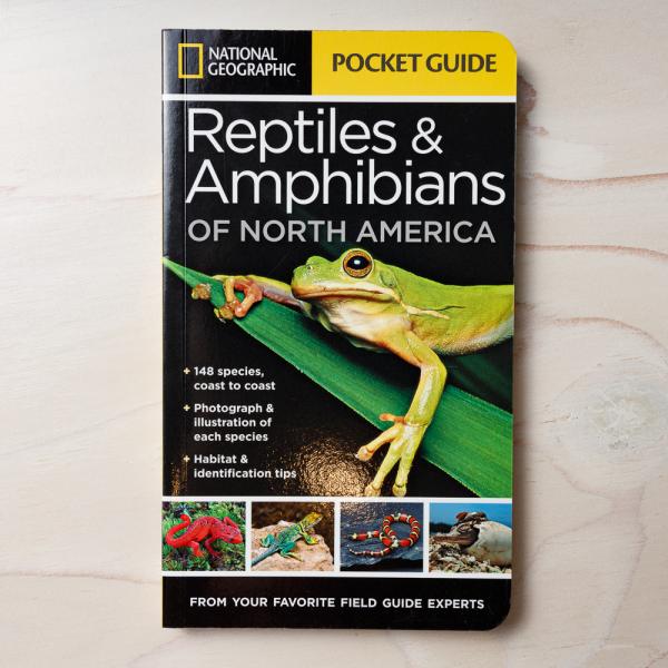 ng reptiles and amphibians