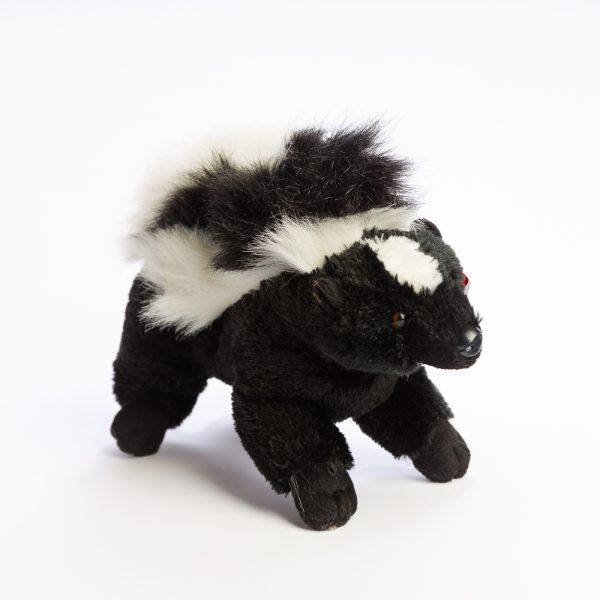 small skunk