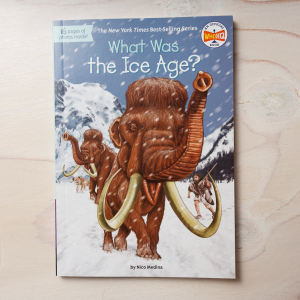 what was the ice age