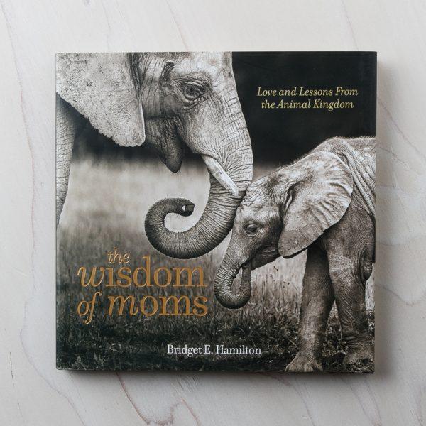 wisdom of moms book