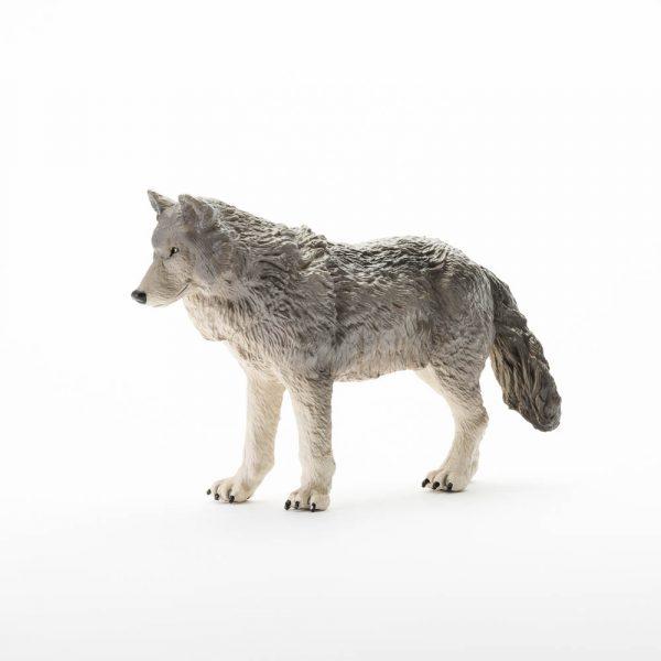 Gray Wolf L
