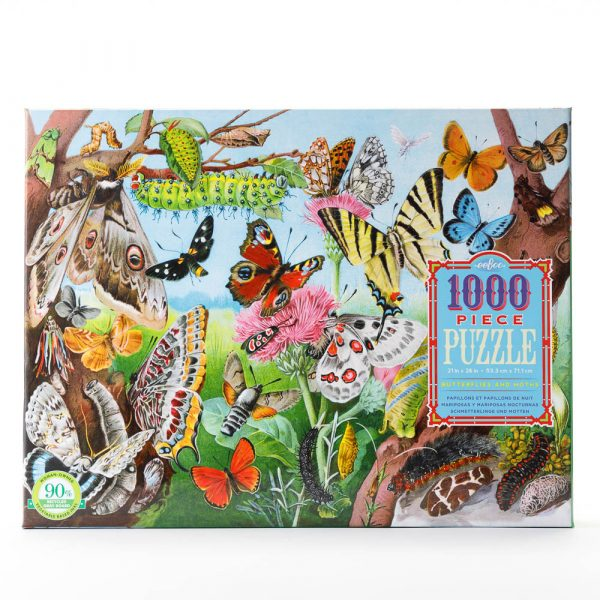 butterflies and moths puzzle
