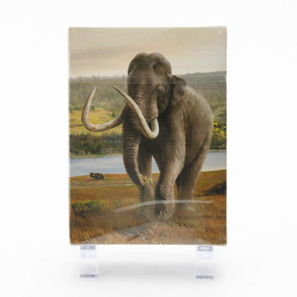 mammoth playing cards