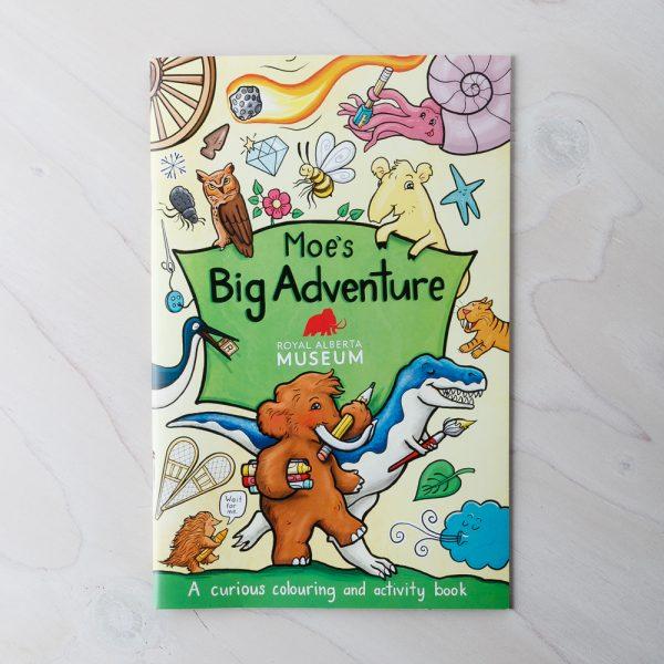 moes big adventure