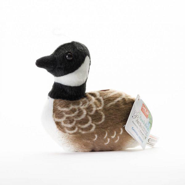 aud canada goose