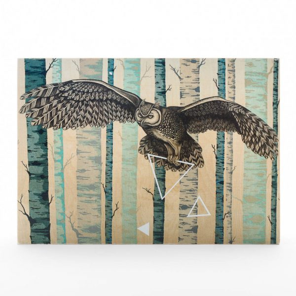 befriened owl print