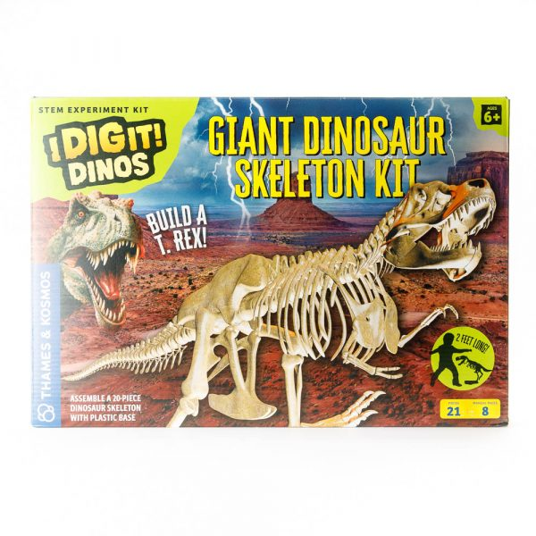 dinosaur skeleton kit