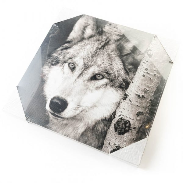 side profile wolf