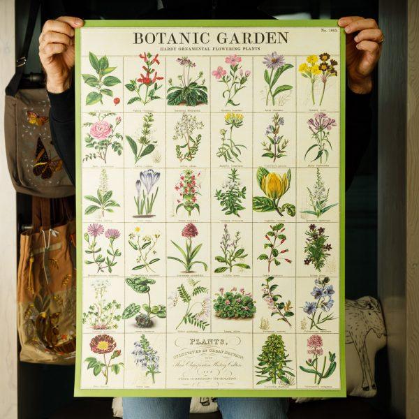 cavallini botanic garden poster