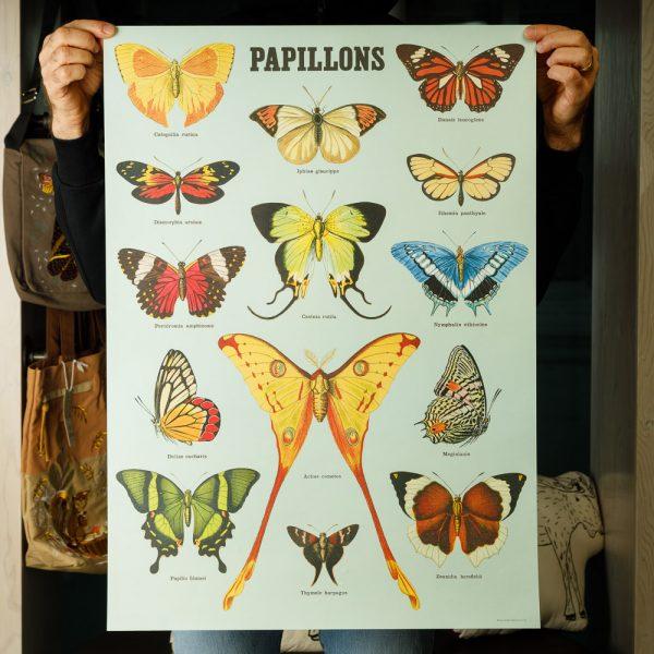 cavallini butterflies papillons poster