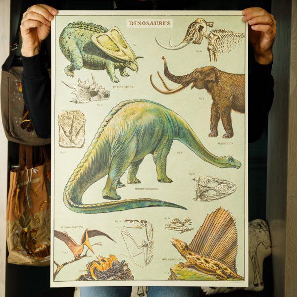 cavallini dinosaurs poster
