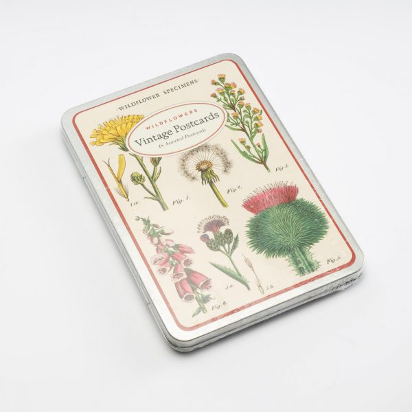 cavallini wildflower post cards