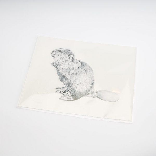 sarah hammond beaver print