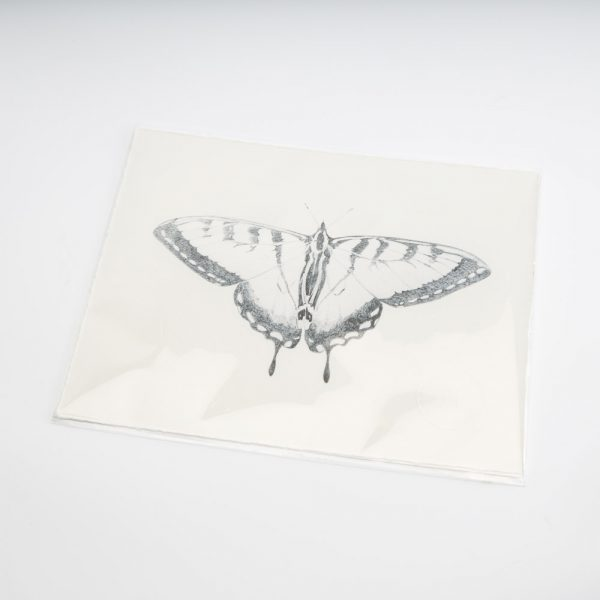 sarah hammond butterfly print