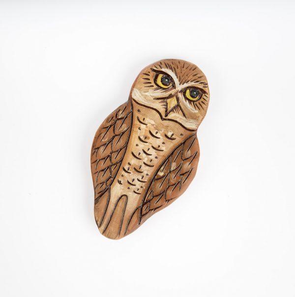 annette ten cate burrowing owl magnet