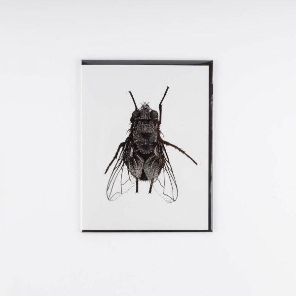 erin greenough fly card