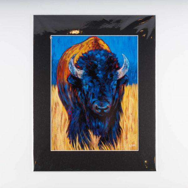 kari lehr bison