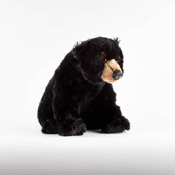 sitting black bear