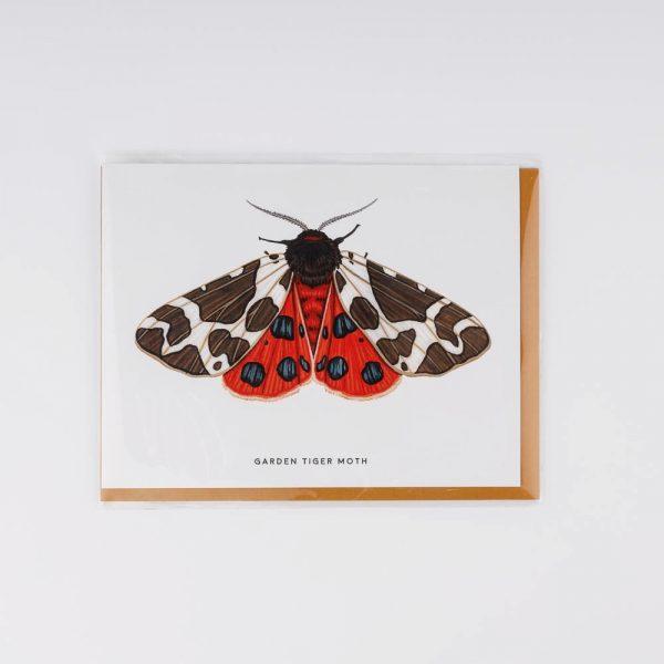 garden tiger moth card