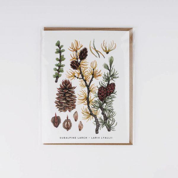 subalpine lurch card