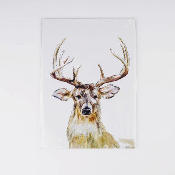 white tailed deer print