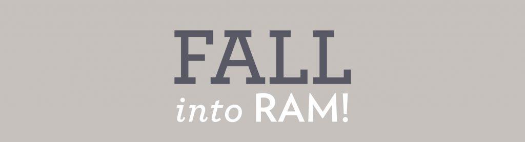 RAMShop Fall Enews Fall grey