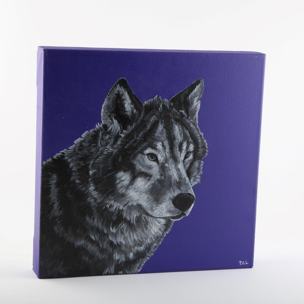 wolf square